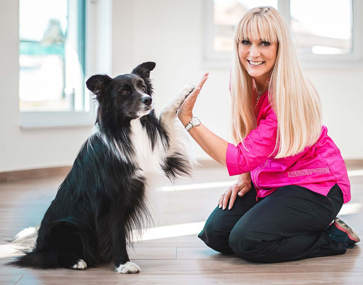 Hundesalon Breiterfurt - Doris Quehenberger
